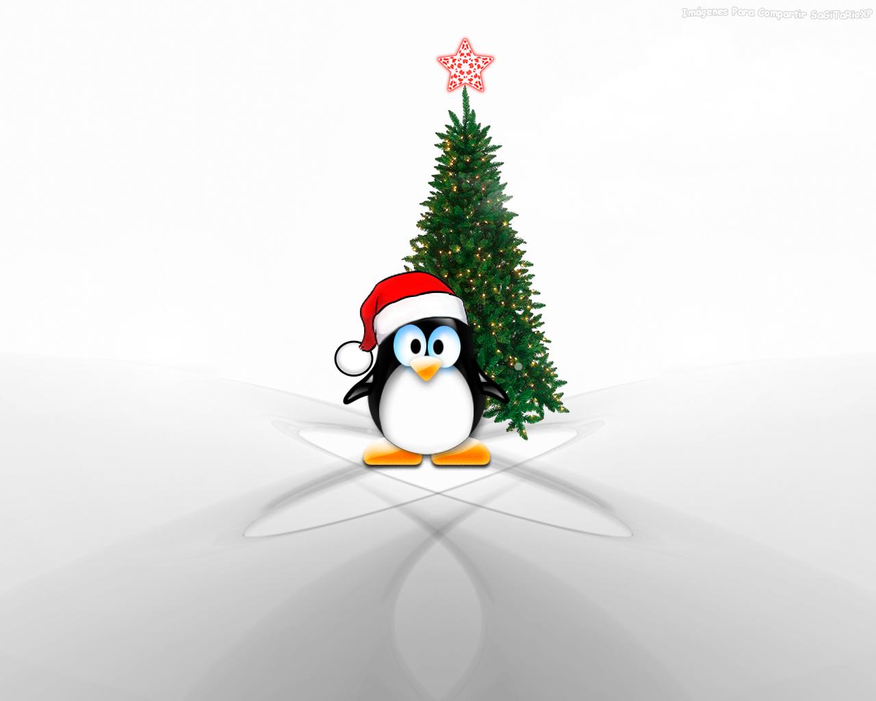 Fondo De Pantalla 3d De Navidad De Santa Vas De Luna Hd: Imágenes Y Fondos